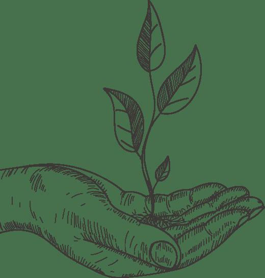 La démarche Développement durable et RSE
